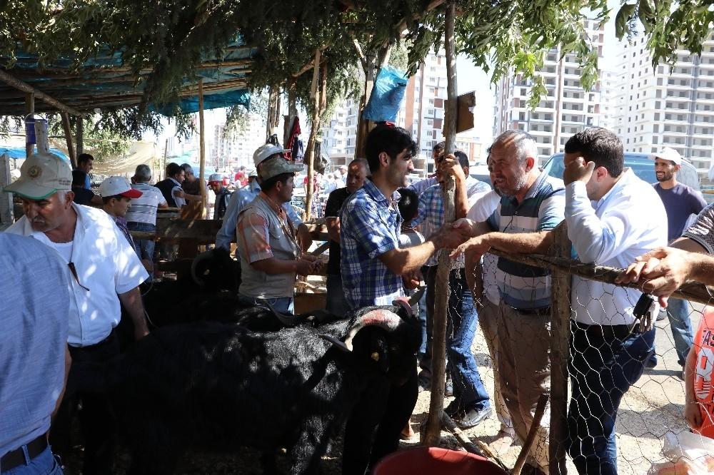Arefe günü pazarlıklar sıkılaştı 1