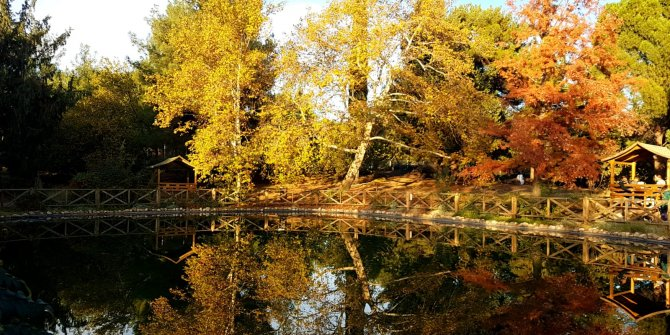 Kahramanmaraş Kapıçam Botanik park görülmeye değer