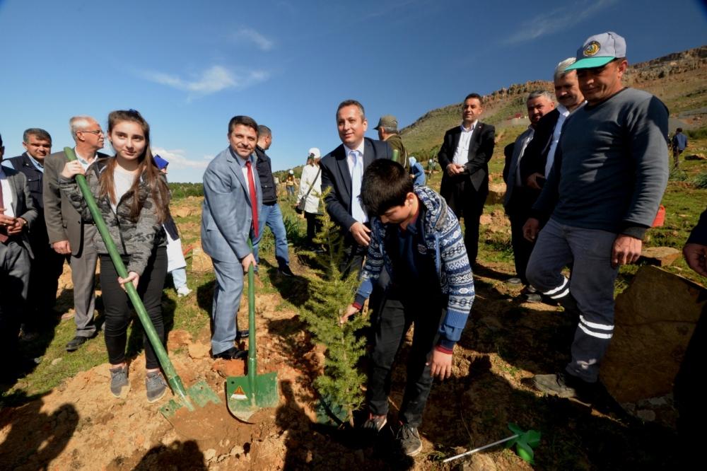 Orman Haftasında öğrenciler 5.000 fidanı toprakla buluşturdu 1