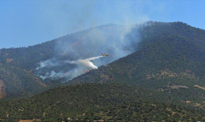 Kahramanmaraş'ta 2 hektarlık örtü yandı
