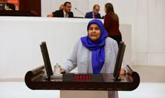 Ak Partili Öçal CHP ve HDPli vekilleri eleştirdi