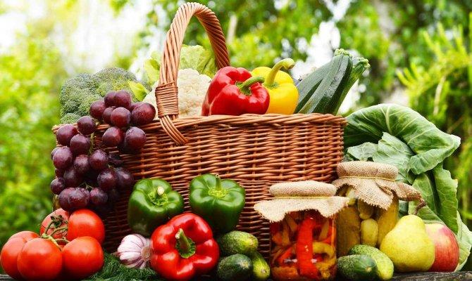 Organik Tarım yaygınlaşıyor