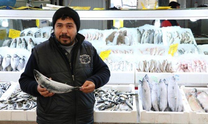 Kahramanmaraşlı artık ucuz balık yiyecek