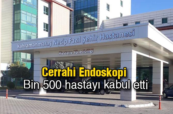 Cerrahi Endoskopi Bin 500 hastayı kabul etti