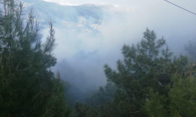 Adıyaman'da yangında 3 hektarlık orman zarar gördü
