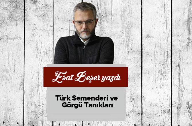 Türk Semenderi ve Görgü Tanıkları