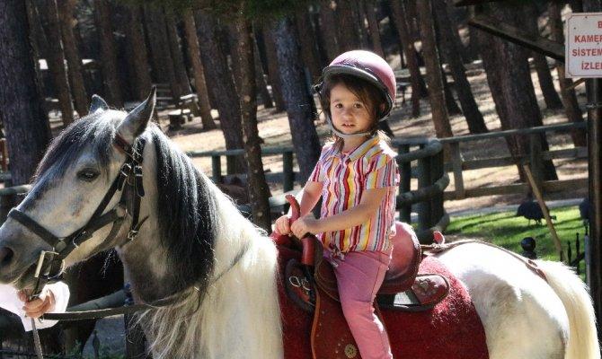 Kahramanmaraş'ta mini hayvanat parkı misafirlerini ağırlıyor