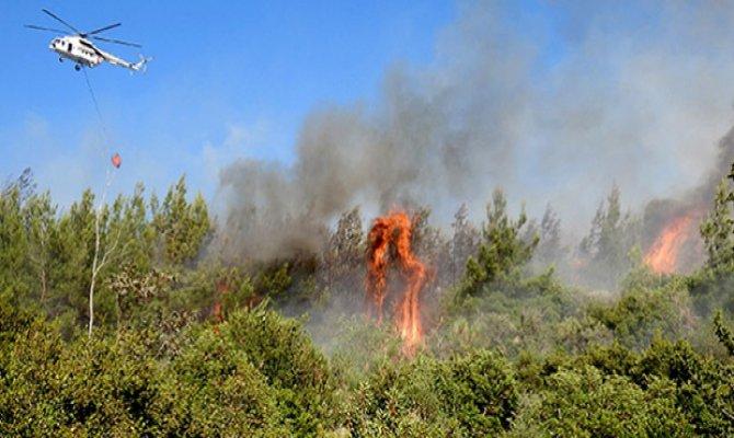 Kahramanmaraş'ta otluk ve çalılık alan yandı