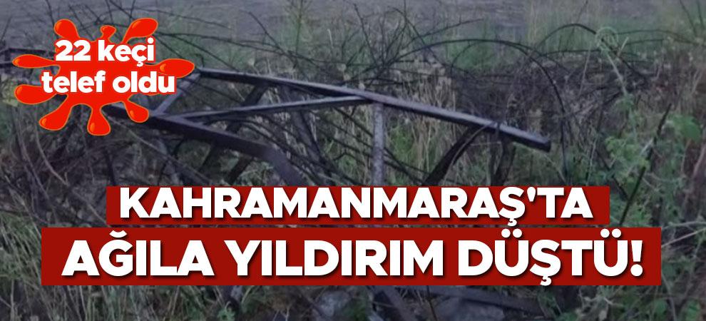 Kahramanmaraş'ta ağıla yıldırım düştü! 22 keçi telef oldu