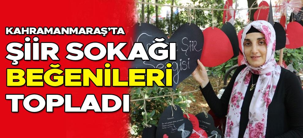Kahramanmaraş'ta şiir sokağı beğenileri topladı