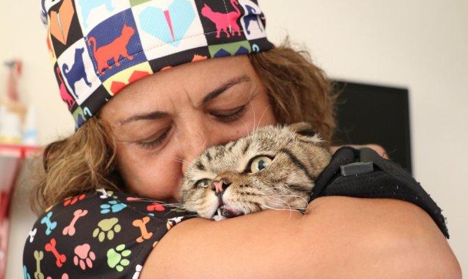 Hayvan sevgisi 21 yıllık öğretmeni veteriner teknikeri yaptı