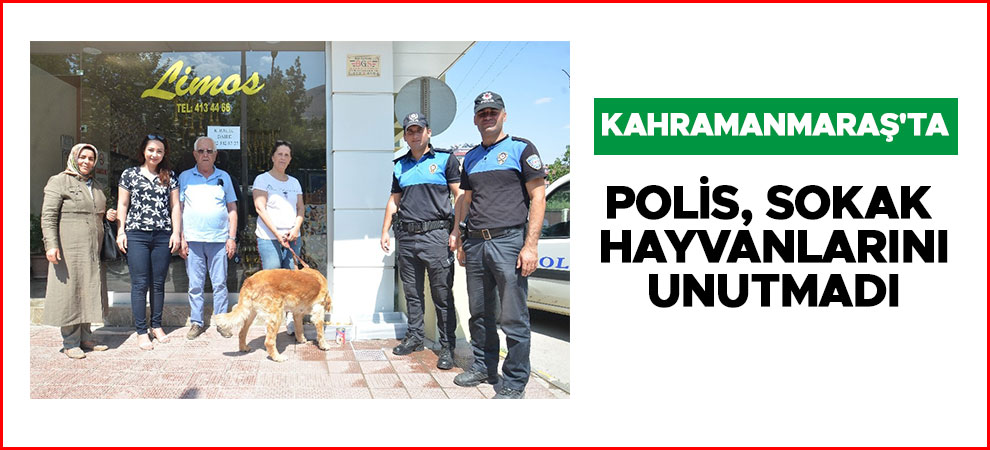 Kahramanmaraş'ta polis, sokak hayvanlarını unutmadı