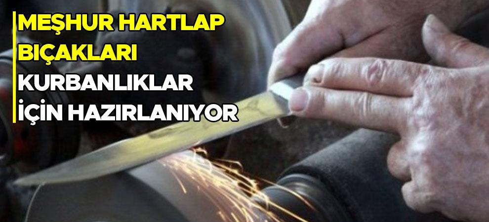 Meşhur Hartlap bıçakları kurbanlıklar için hazırlanıyor