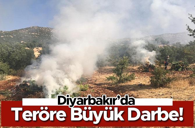 Diyarbakır'da Teröre Büyük Darbe