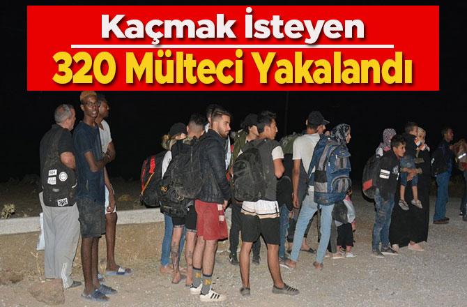 Kaçmak İsteyen 320 Mülteci Yakalandı