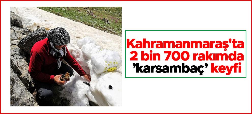 Kahramanmaraş'ta 2 bin 700 rakımda 'karsambaç' keyfi