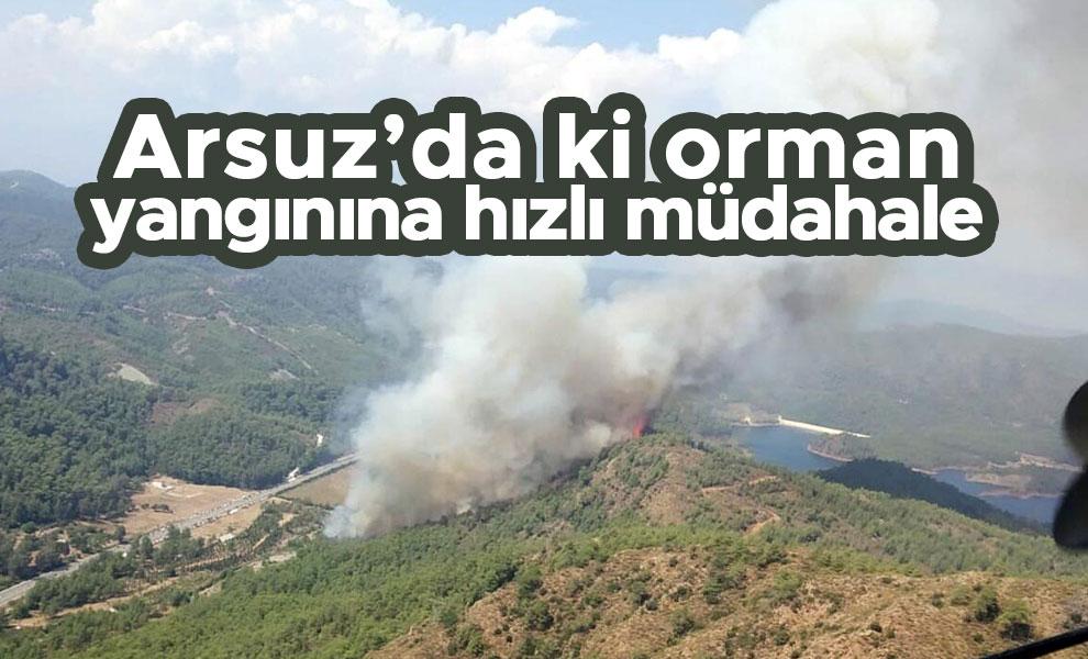 Arsuz'da ki orman yangınınahızlı müdahale