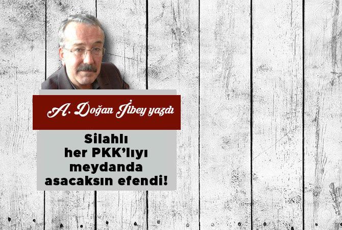 Silahlı her PKK'lıyı meydanda asacaksın efendi!