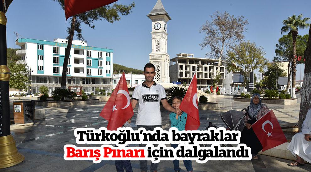 Türkoğlu'nda bayraklar barış pınarı için dalgalandı