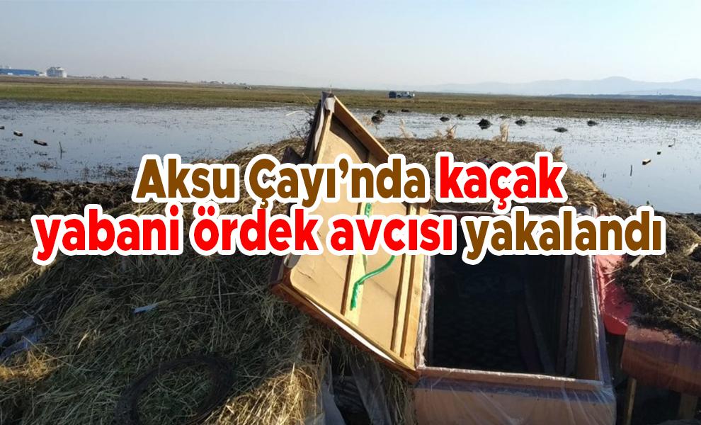 Aksu Çayı'nda kaçak yabani ördek avcısı yakalandı