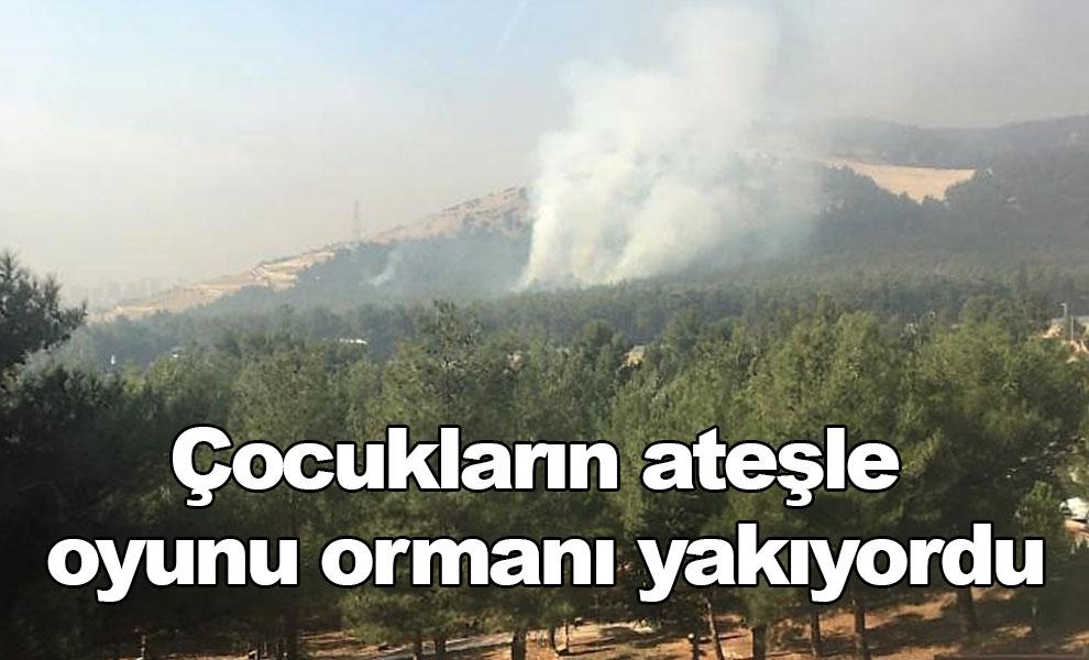 Çocukların ateşle oyunu ormanı yakıyordu