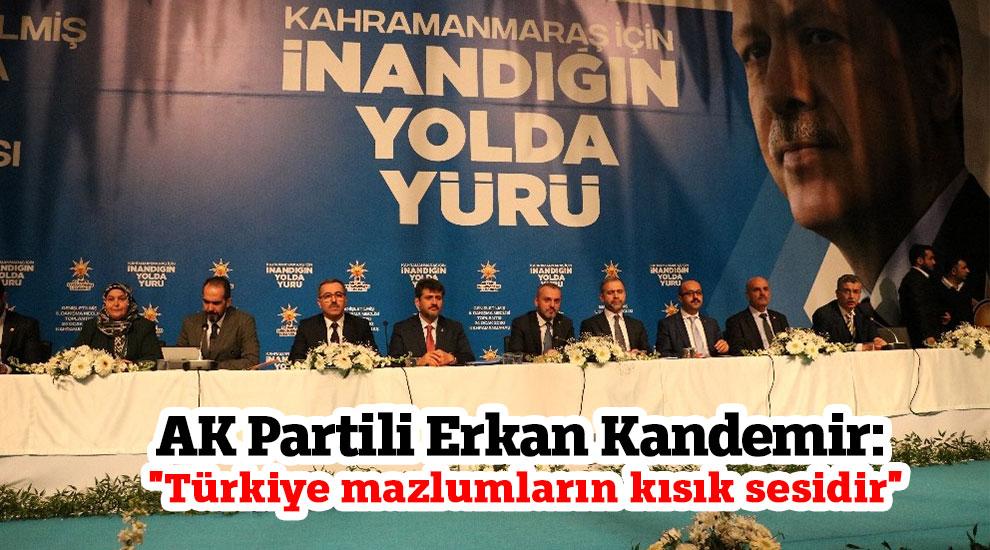 """AK Partili Kandemir: """"Türkiye mazlumların kısık sesidir"""""""