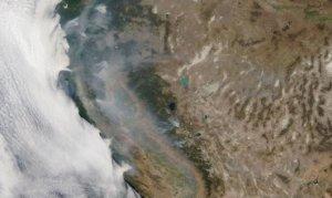 California yangınıyla 1 gözaltı