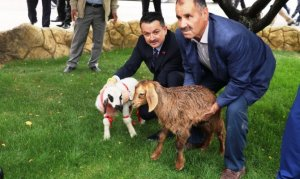 Tarım ve Orman Bakanı Pakdemirli Malatya'da