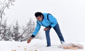 Dulkadiroğlu Belediyesi Yaban Hayvanlarına şefkat eli uzattı