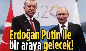 Erdoğan Putin ile bir araya gelecek