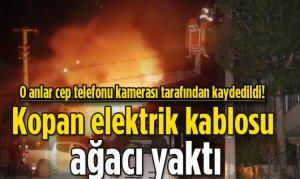 Kopan elektrik kablosu korkuttu