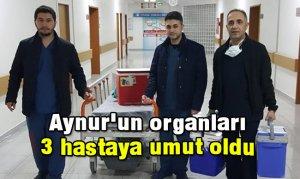 Aynur'un organları 3 hastaya umut oldu