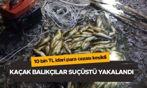 Kaçak balıkçılar suçüstü yakalandı