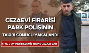 Cezaevi firarisi park polisinin takibi sonucu yakalandı