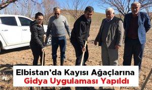 Elbistan'da Kayısı Ağaçlarına Gidya Uygulaması Yapıldı