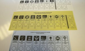 6 adımda oy kullanma rehberi