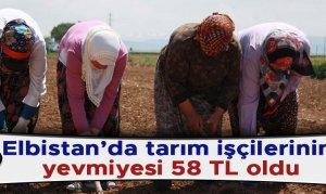 Elbistan'da tarım işçilerinin yevmiyesi 58 TL oldu