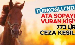 Türkoğlu'da ata sopayla vuran kişiye 773 lira ceza kesildi