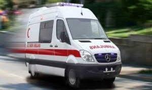 Kahramanmaraş'ta ağaçtan düşen Kıbrıs gazisi hayatını kaybetti
