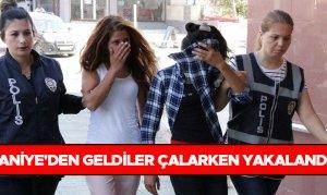 Osmaniye'den geldiler çalarken yakalandılar