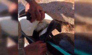 Teröristlerin tuzakladığı motosiklet etkisiz hale getirildi