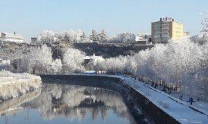 Kars eksi 12'yi gördü, ağaçlarda kırağı oluştu