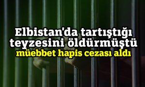 Elbistan'da tartıştığı teyzesini öldürmüştü müebbet hapis cezası aldı