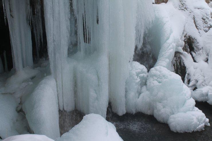 Sırakayalar Şelalesi soğuk havanın etkisiyle dondu