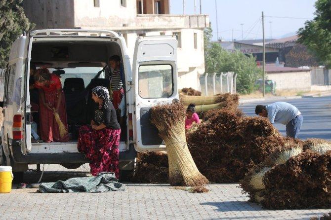 Kahramanmaraş'ta konargöçerlerin ekmek mücadelesi