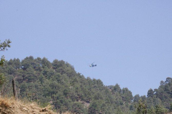 Kahramanmaraş'ta 20 hektar alan kül oldu