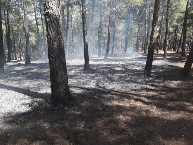 Kahramanmaraş'ta piknik yaparlarken yangına sebep oldular