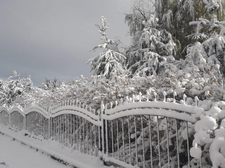 Erzurum güne kartpostallık kar manzarası ile başladı