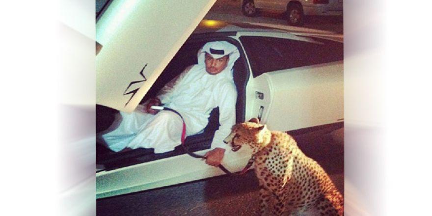 Sadece Dubai'de Görebileceğiniz 10 Şaşırtıcı Şey