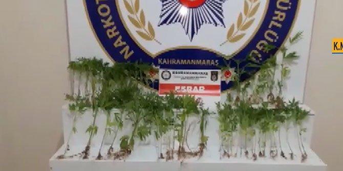 Kahramanmaraş'ta uyuşturucu evine polis operasyonu: 1 gözaltı